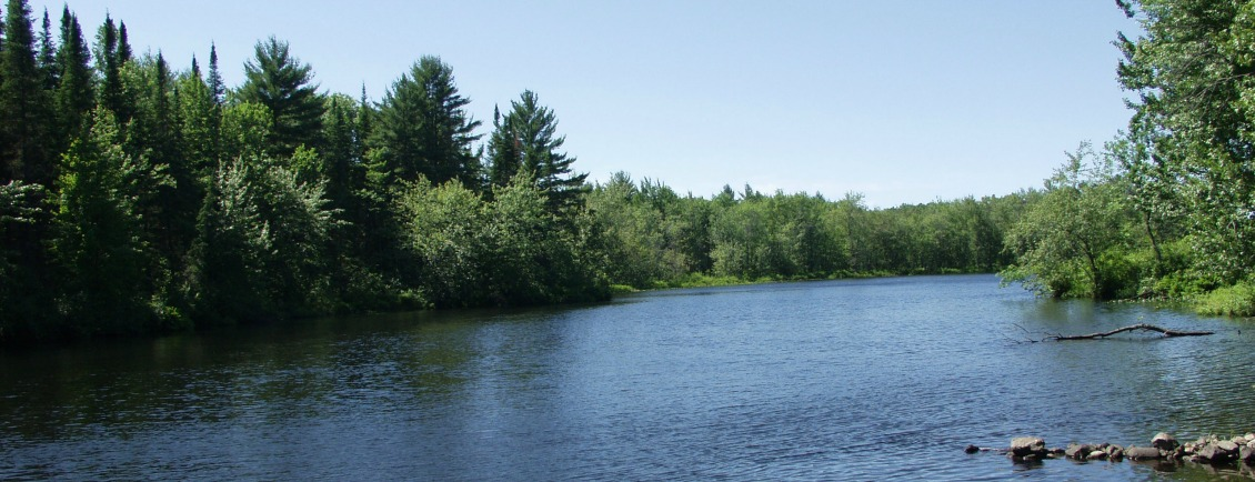 The Crowe River - Upstream